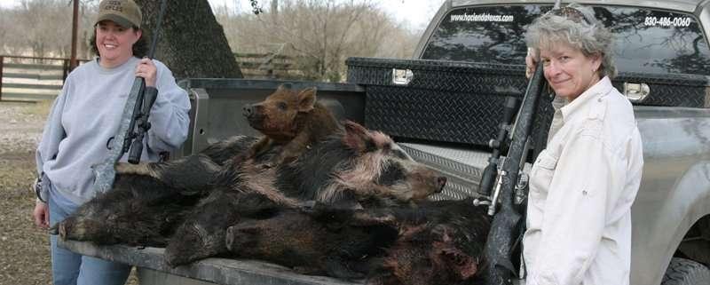 Wild Pig Pozole